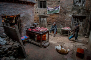 Christian Nørgaard, Christian Noergaard at a Better Moments photo workshop in Nepal and Tibet, China. A local butcher in Kathmandu is waiting for his customers.