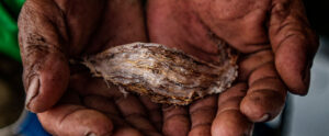 James Whitlow Delano Lagen Island, El Nido, Palawan, Philippines Better Moments workshop Pearl Fisherman