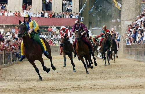 Horses racing at Il Palio di Siena - Marco Di Lauro