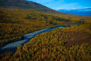 Ingemar Ljungdahl Abisko River